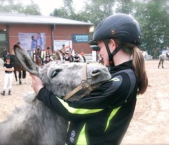 Tierfamilie-Esel-1-350-300